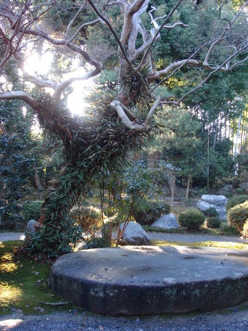 橋本関雪の庭