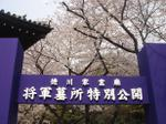 0404tokugawa