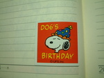dogs_birthday